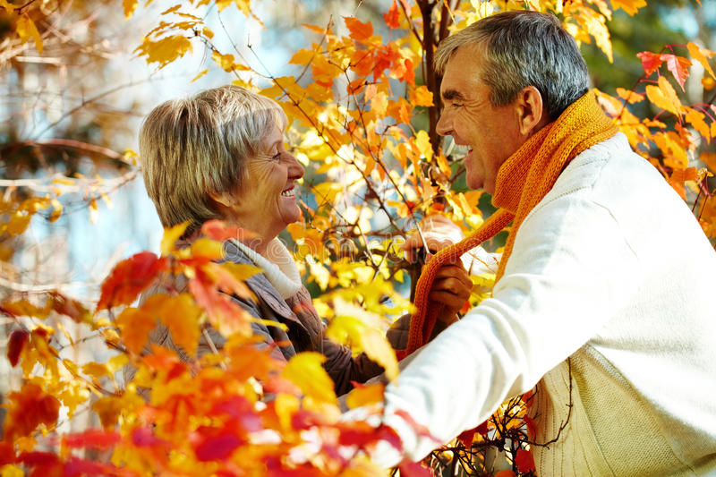 Download Love and gold stock photo. Image of couple, outside, fall - 24514286