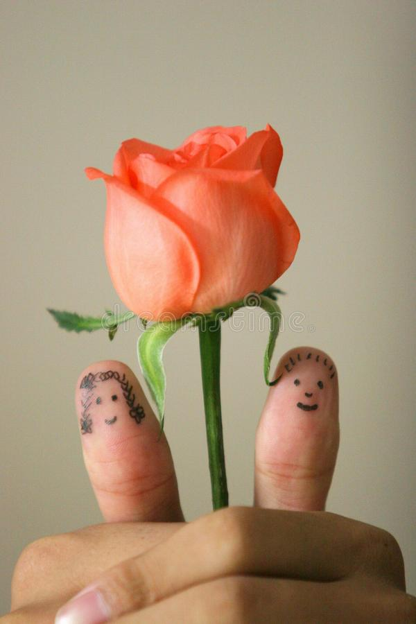 Love in hand. Two fingers fall into love,a rose between them stock images