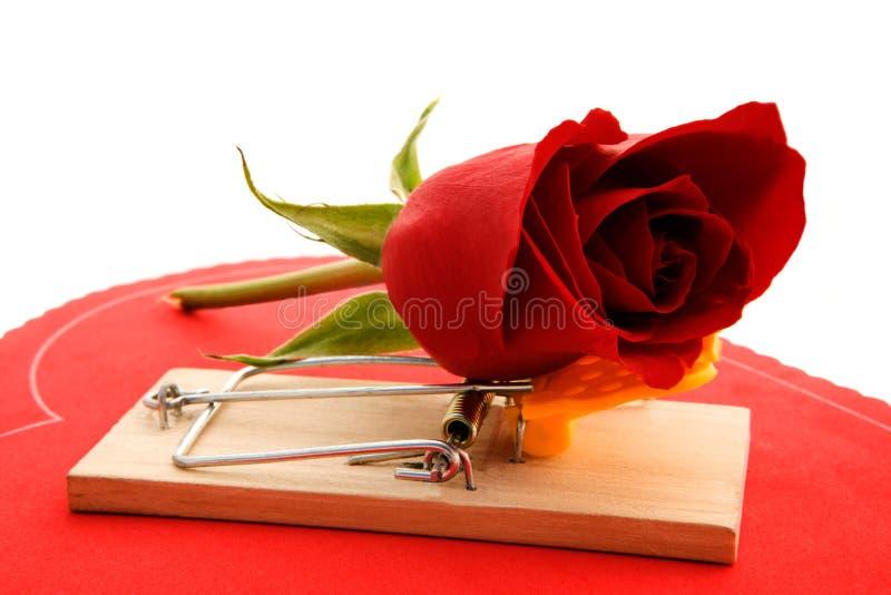 Love hurts royalty free stock photo