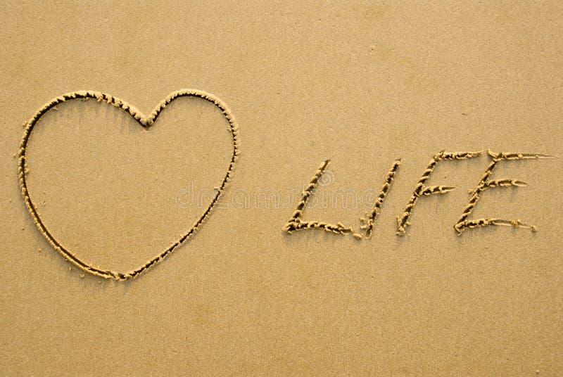 Love life. Written on a sandy beach royalty free stock photos
