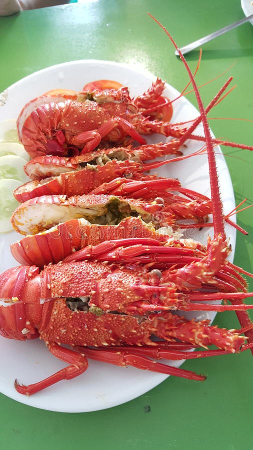 Love lobsters stock image