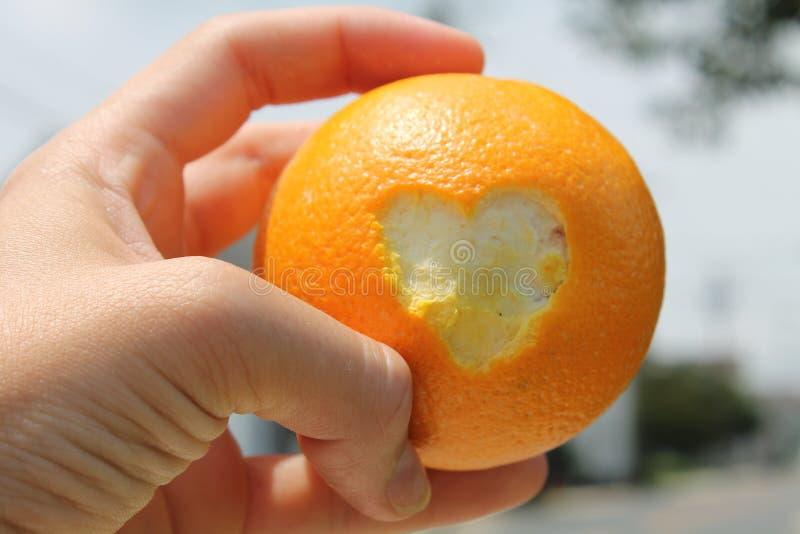 LOVE'ly apelsin fotografering för bildbyråer