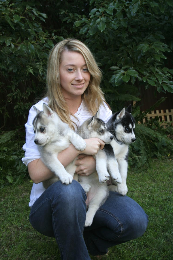 Download Love my husky puppies stock image. Image of puppy, love - 22924185