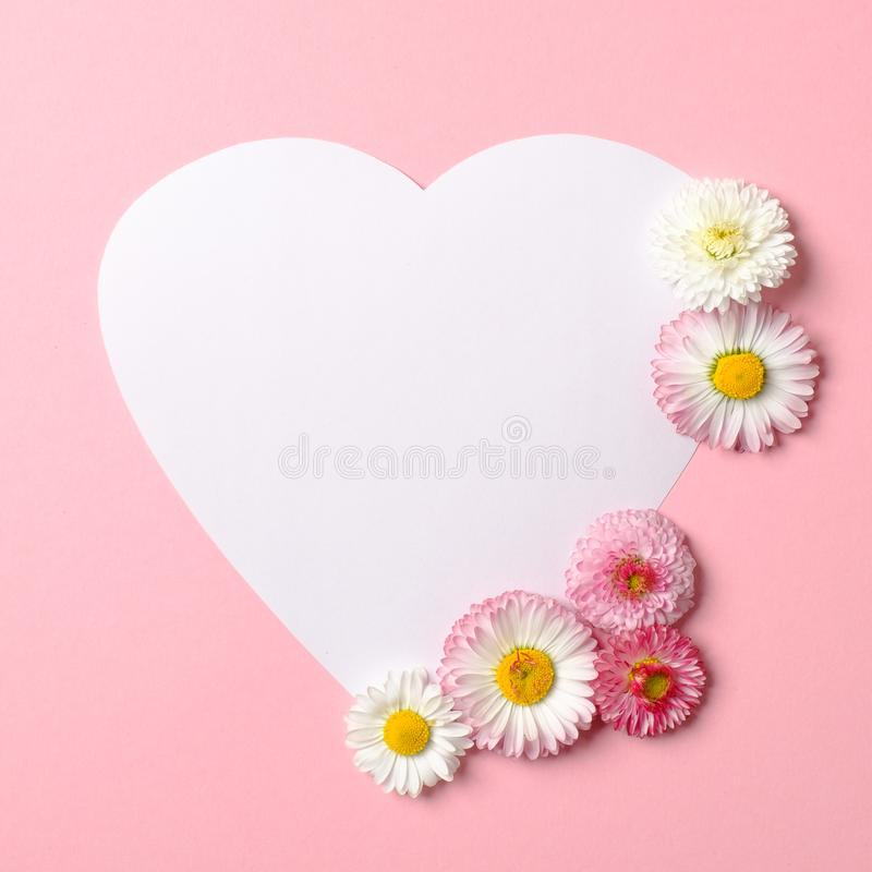 Love nature concept. Daisy flowers and white heart-shaped paper card on pastel pink background. Flat lay composition with copy. Space. Top view, overhead stock photos