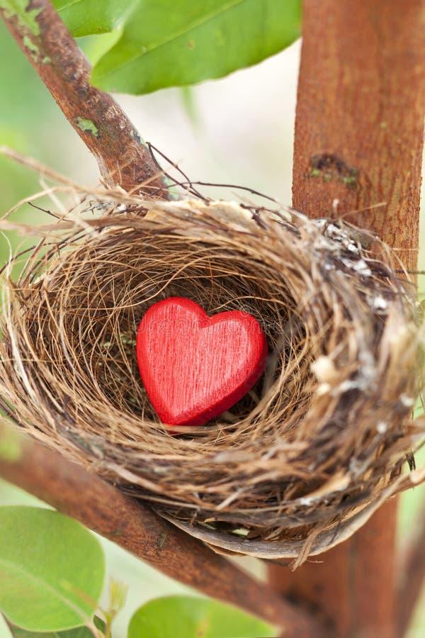 Love Nest Heart Valentine royalty free stock image