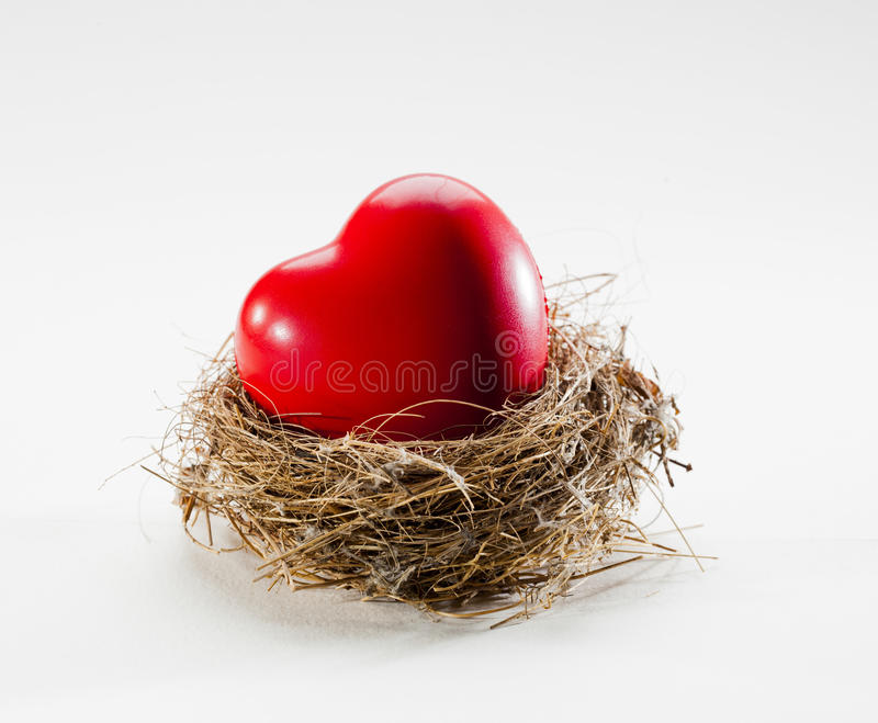 Love nest with healthy heart symbol. Protected marriage for long-life happiness stock photography