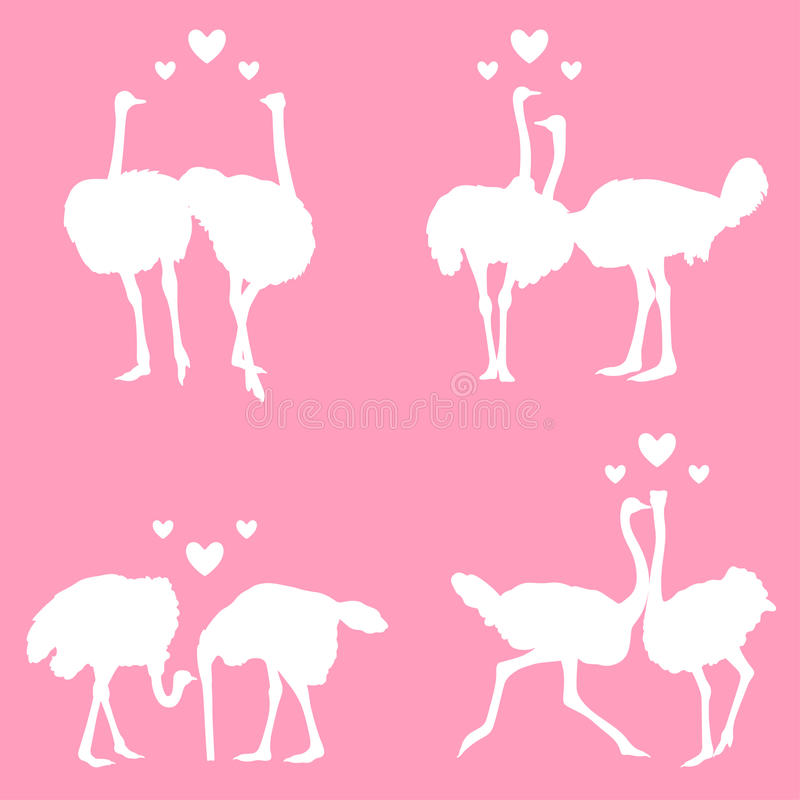 Download In love ostriches stock vector. Illustration of fauna - 23875479