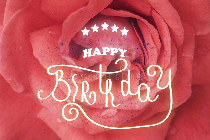 Happy birthday hand lettering. One rose flower up close royalty free stock photo