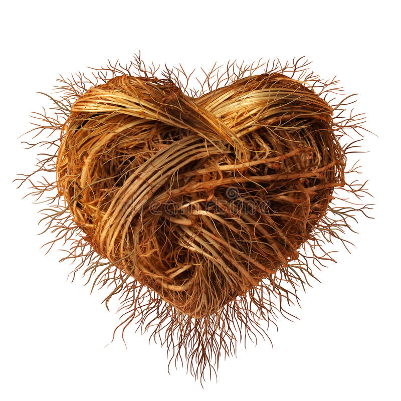 Love Roots vector illustration