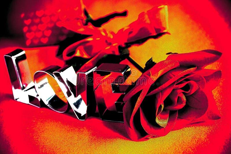 Love rose stock photo