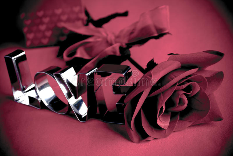 Love rose royalty free stock image