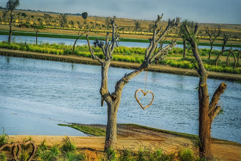 Love Sign hanging from a tree in Love Lake Dubai royalty free stock images