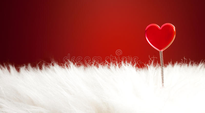 Love is soft and wark feeling royalty free stock image