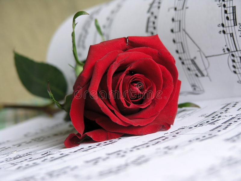 Love Song for You. Red rose on the scores .This is so romantic stock images