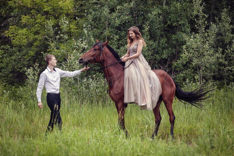 Love story. Two lovers in the forest. Photo with a horse. Love story. Two lovers in the forest. Photo with a bay horse stock image
