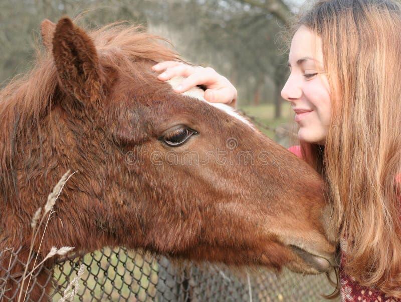 Love to an animal. stock photo
