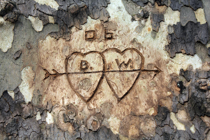 Love Tree Carving royalty free stock photography