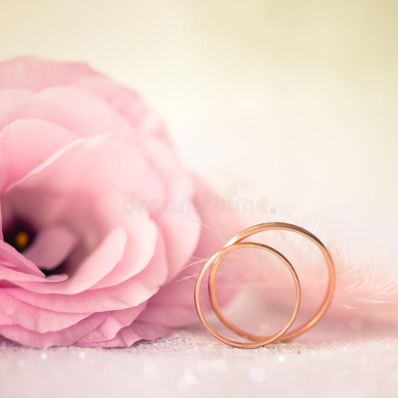 Love Wedding Background with Gold Rings and Beautiful Flower stock photography