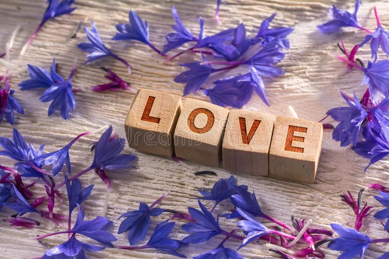 Love on the wooden cubes. Love written on the wooden cubes with blue flowers on white wood stock photography