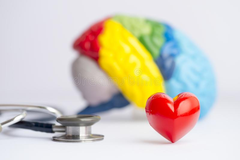 Love your brain/mental health concept. Love your brain/mental health concept shot in a studio - stethoscope, a colorful brain model and a heart royalty free stock photos