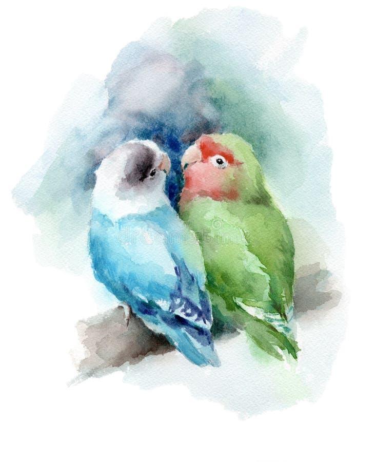 Lovebirds akwareli miłości Ptasia ręka Rysująca ilustracja ilustracji