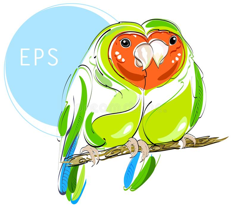 Lovebirds. Couple of bright green parrots vector illustration. Love and fidelity stock photos