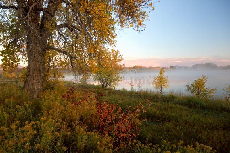 Loveland, Colorado na queda fotografia de stock royalty free