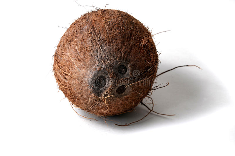 Loveley coconut face stock images