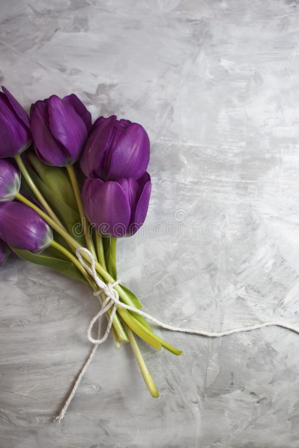 A pretty bouquet of violet tulips stock image