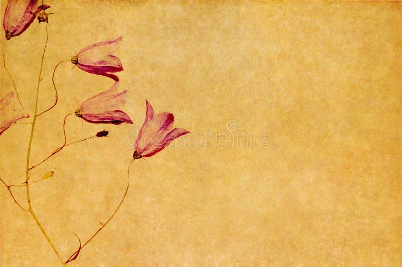 Lovely Background Image Royalty Free Stock Photo