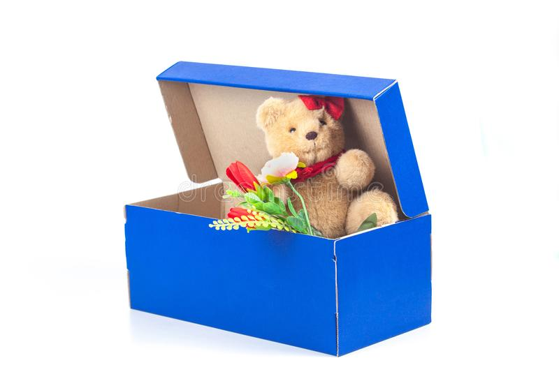 Lovely bear toy in blue box gift on white. Background royalty free stock images