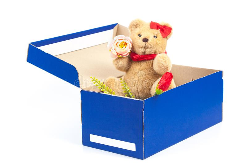 Lovely bear toy in blue box gift on white. Background royalty free stock image