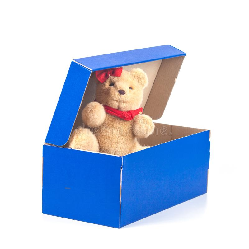 Lovely bear toy in blue box gift on white. Background royalty free stock photo