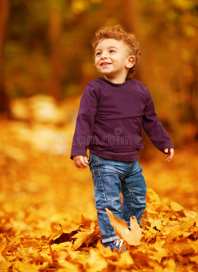 Lovely boy in autumnal woods. Photo of cute little boy having fun in autumn park, adorable kid playing game with dry autumnal leaves in forest, cute little royalty free stock image