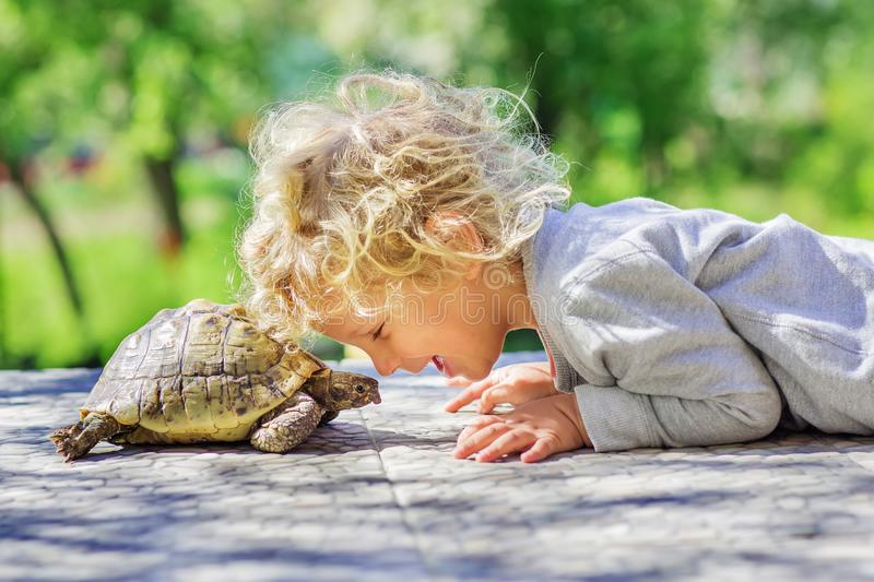 Lovely boy with turtle. Fun royalty free stock images