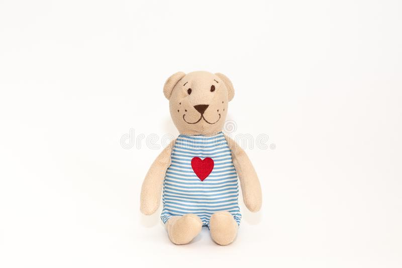 Lovely brown teddy bear isolated on white background,mock up for card cerebration.  royalty free stock photography