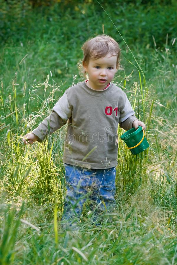 Download Lovely Child Plays To A Grass Stock Photo - Image: 2589168