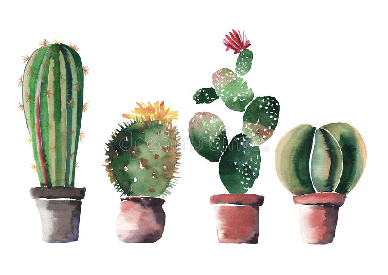 Lovely cute graphic wonderful abstract beautiful bright summer four cactuses in red and brown clay pots with flowers vector illustration