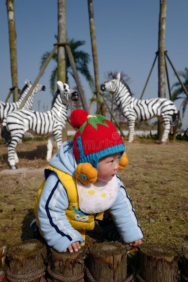 Cute little boy playing with zebra royalty free stock photo