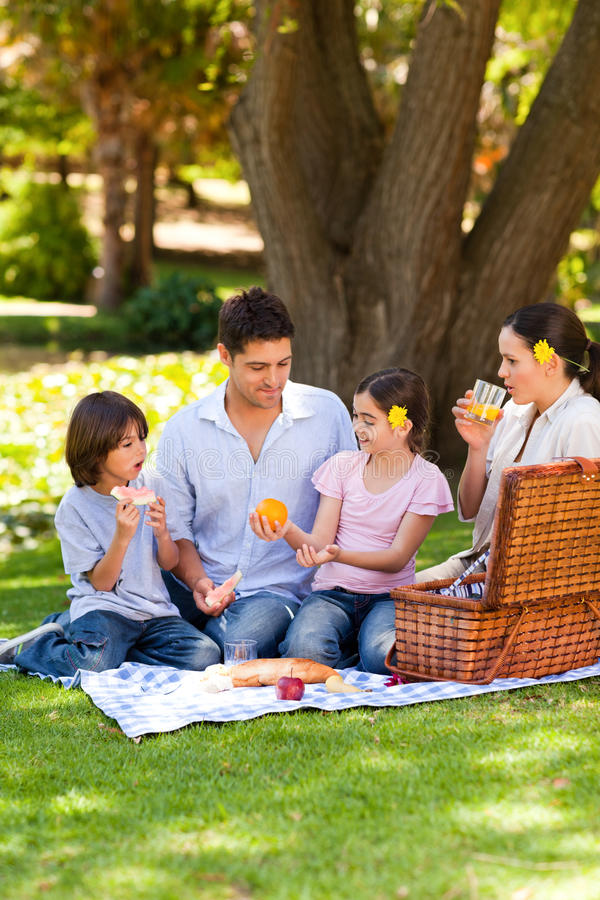 Lovely family picnicking in the park stock image