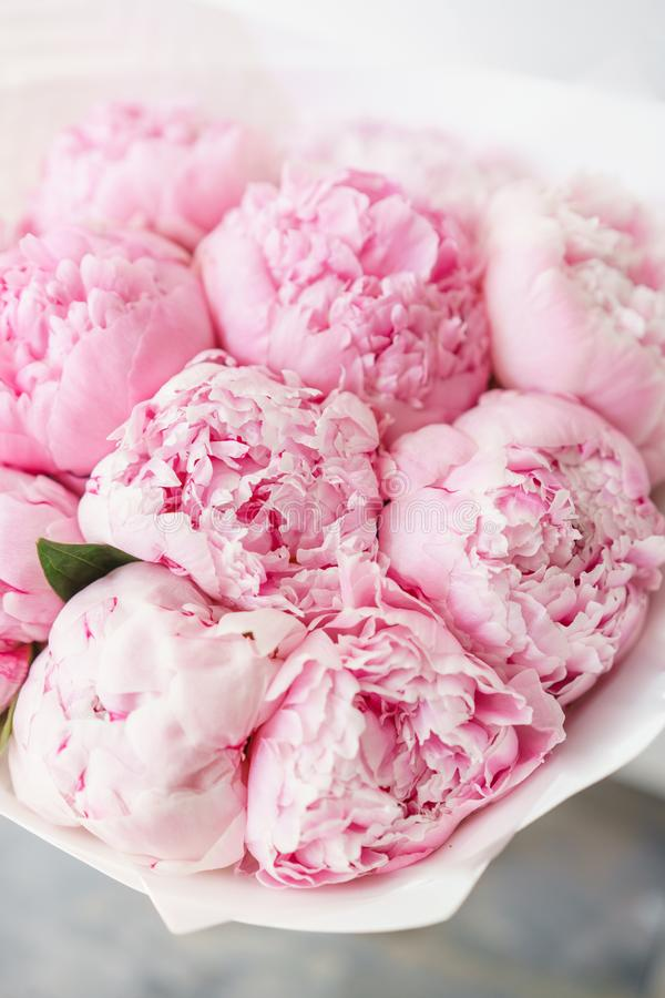 Lovely flowers in glass vase. Beautiful bouquet of pink peonies . Floral composition. Wallpaper. Lovely flowers in glass vase. Beautiful bouquet of pink peonies royalty free stock image