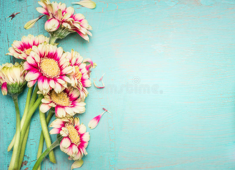 Download Lovely Flowers On Turquoise Shabby Chic Background Stock Image