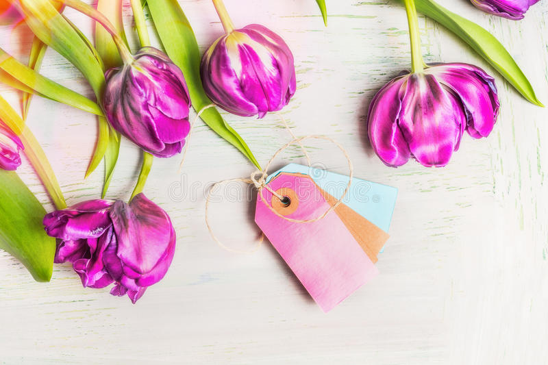 Lovely fresh tulips with empty tags on light shabby chic background, top view. Spring flowers. Concept stock images