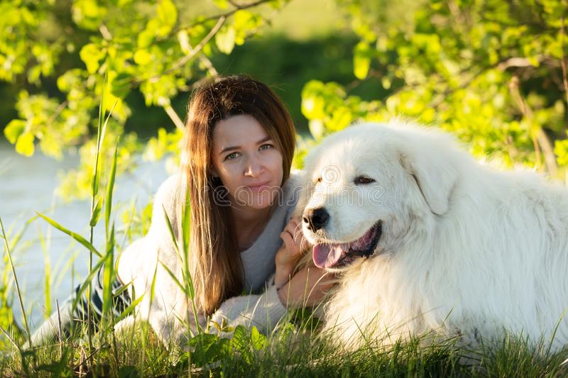 A lovely girl and Cute maremma sheepdog. Big white happy dog breed maremmano abruzzese lying in the forest in summer stock images