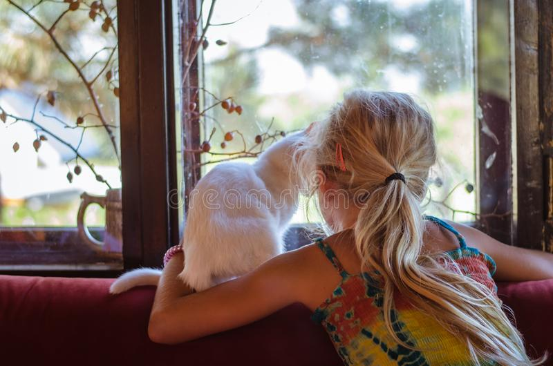 Lovely girl with white cat looking through window royalty free stock images