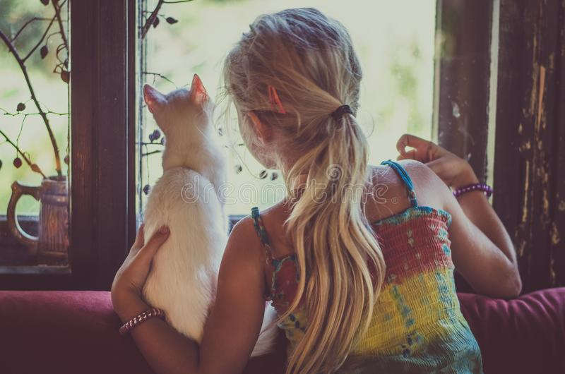 Lovely girl with white cat looking through window stock images