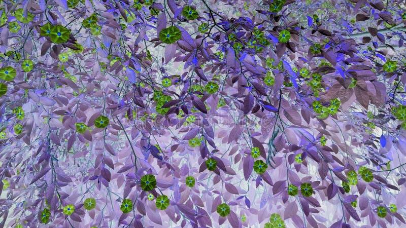 Lovely green flowers for background stock image
