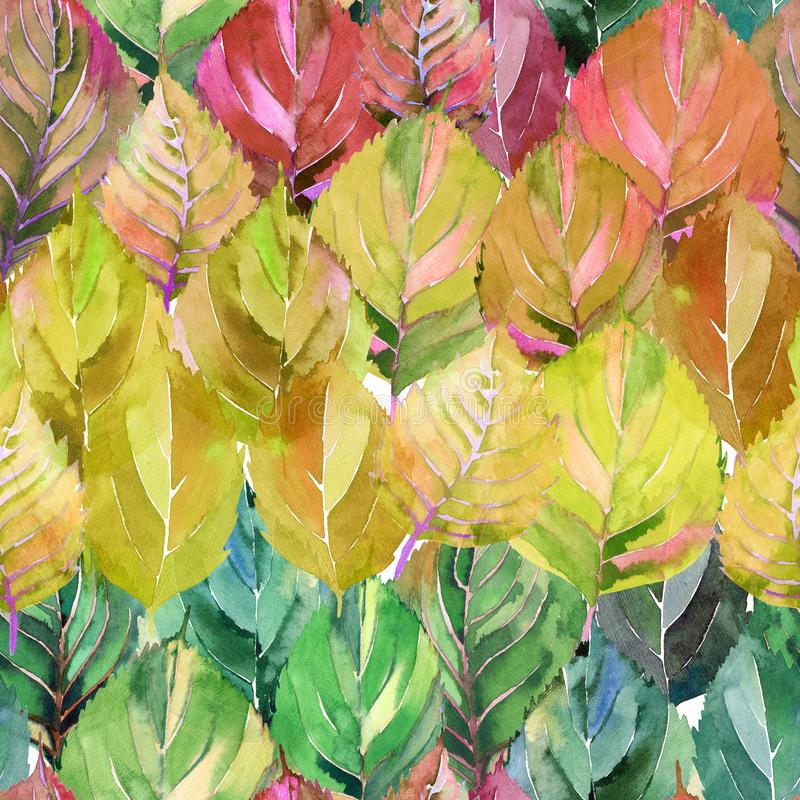 Lovely group of the autumn leaves like rainbow. Graphic bright floral herbal autumn orange yellow leaves pattern. Watercolor hand sketch. Perfect for textile royalty free illustration