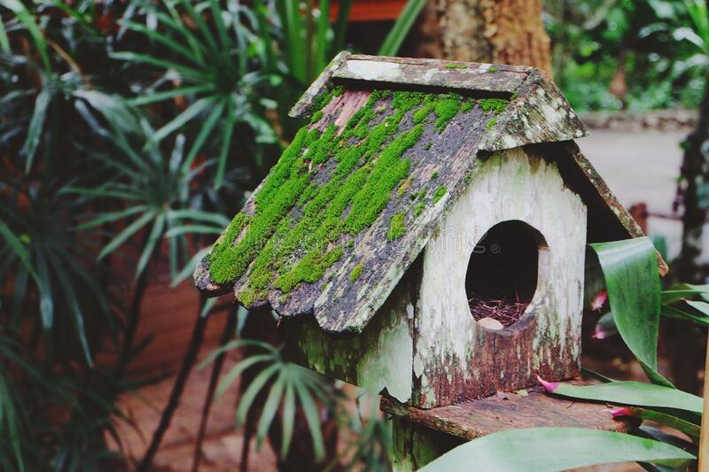 Lovely hand crafted wooden Nest / Cage at resorts Phuket, Thailand stock photography
