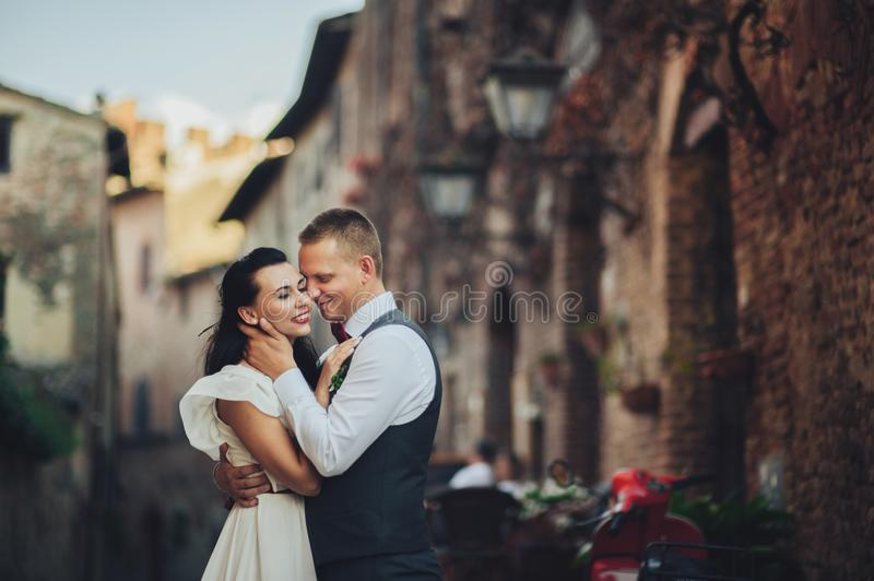 Lovely hugging wedding couple stands before the gates to an old stock image